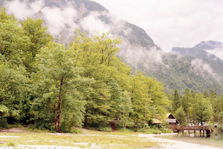 kamping Zlatorog