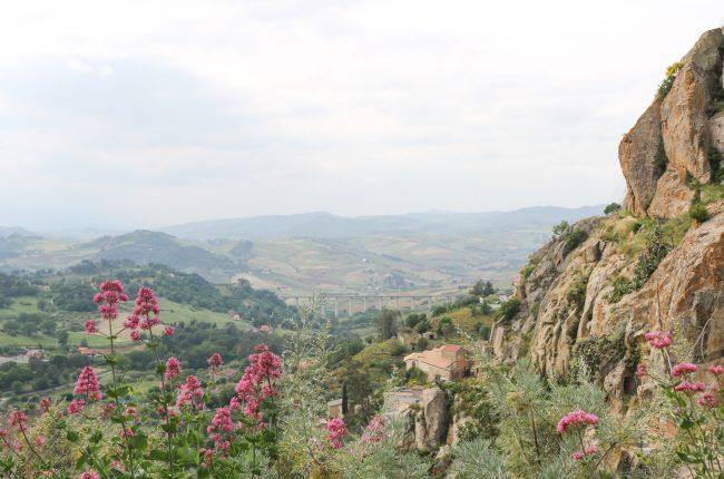sycylia-zwiedzanie-cefalu-nicosia
